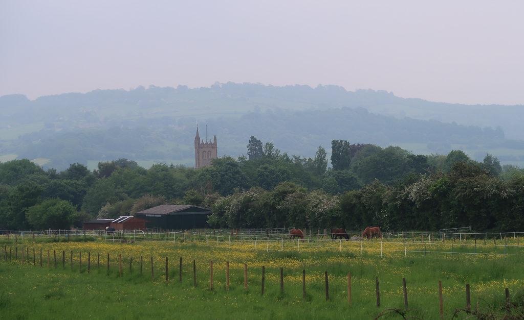 Bristol fields