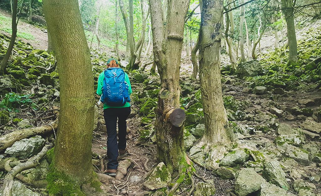 Niedzielny spacer w Somerset - Cheddar Gorge Walk
