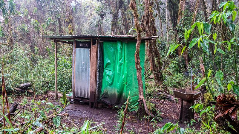 Szlak Salkantay dzień 2 przez dżunglę