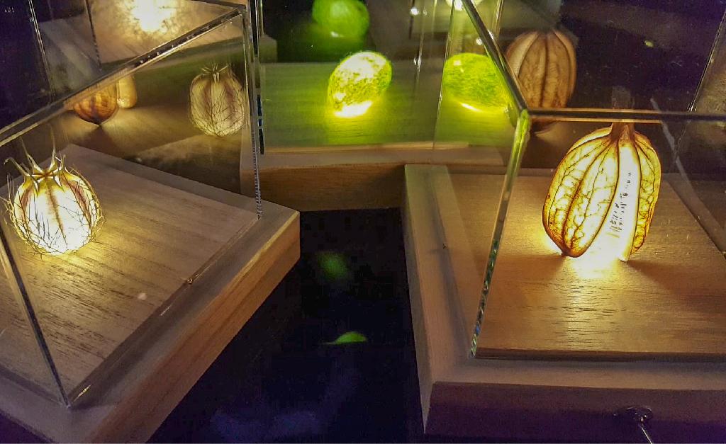 lampy i sztuka japonska to nie typowe polaczenia dla nas