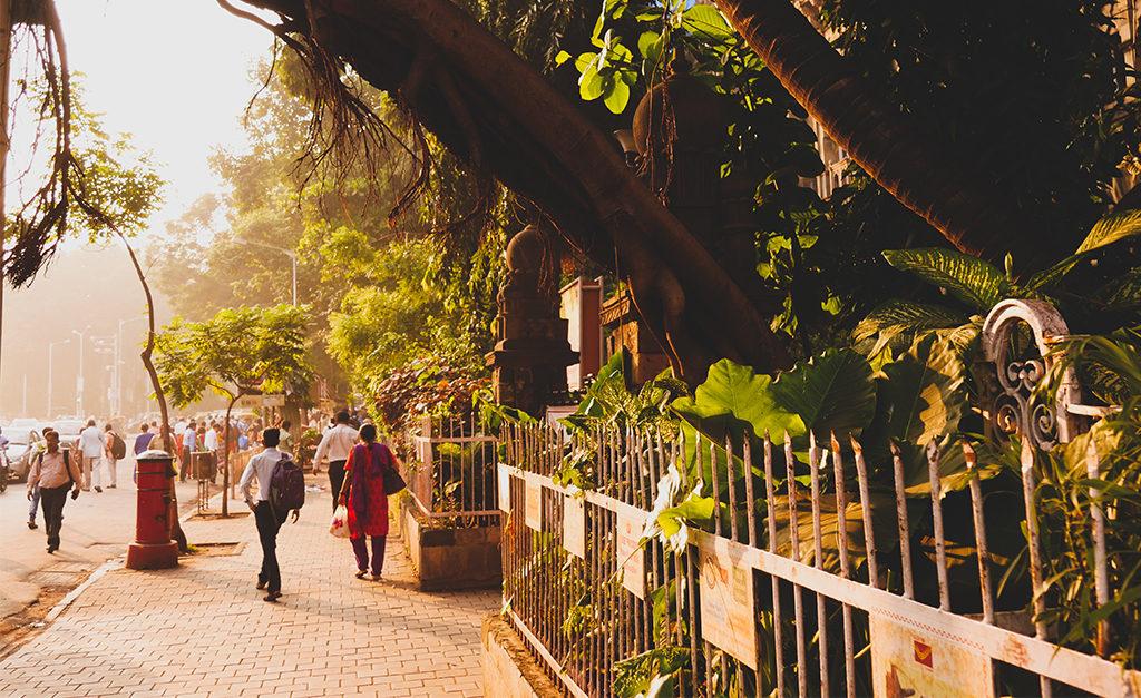 budżetowy Luksus i mombaj